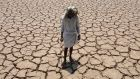 A farmer stands in his dried up cotton field in Nalgonda, in the southern Indian state of Telangana. Photograph: Noah Seelam/AFP/Getty Images