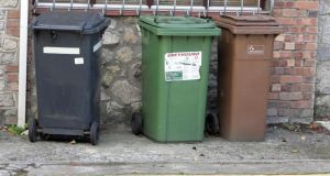 The Department of the Environment has previously said a pay-by-weight refuse system will save money for 87 per cent of households. Photograph: Alan Betson / The Irish Times