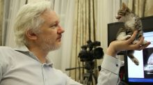 Risk Cannes review: Julian Assange is back in the spotlight