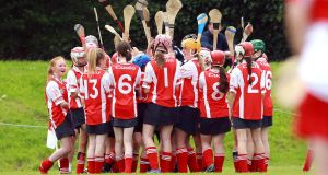 Members of a Cuala camogie team on the field. Photograph: Donall Farmer/Inpho