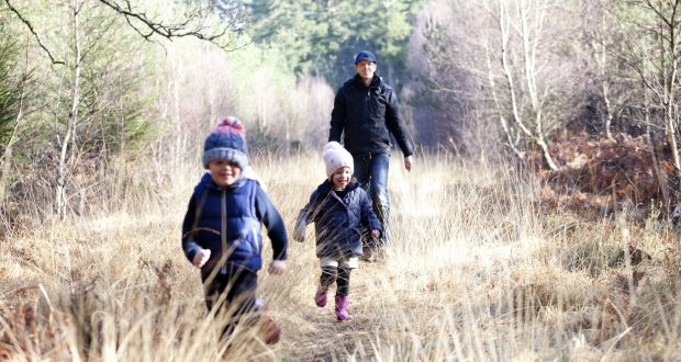 Woodland Walks The Woodlands For Health Project In Co Wicklow Was Set Up 2012