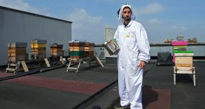 Andrew Douglas with honey beehives on the roof of Belvedere College, Dublin. Photograph: Dave Meehan/The Irish Times