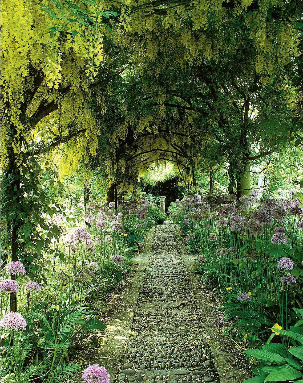 Best In Class Magical Gardens