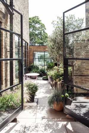 If space is limited, opt for plants in pots as the owners of this courtyard garden in East Dulwich, London, designed by Red Squirrel Architects, have done. The glass walls, executed by McHenry Structures and designed and implemented by Tobyn Burnett Gardens, allow them to enjoy the foliage all year round. Redsquirrelarchitects.com; Tobynburnett.co.uk; mchenrystructures.com