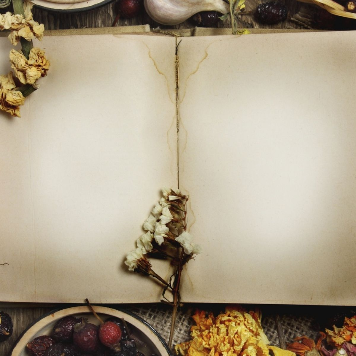 The history of the world through recipe books forumfinder Image collections