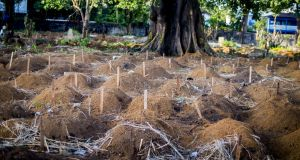 An Ebola burial site in  Sierra Leone. Concern Worldwide  and the International Federation of the Red Cross took over the safe burial of victims in a way which allowed family members to be present. They had previously been barred amid fears of contagion.  Photograph: Concern Worldwide