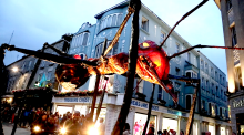 Giant insects take over Galway