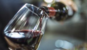Fermented red grapes – wine – are the most concentrated source of resveratrol. But don't go mad on the Merlot. Photograph: iStock