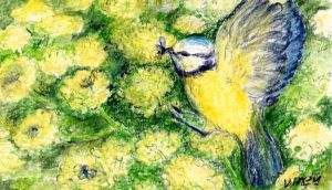 Insect orgy: a blue tit snatching a fly from alexanders. Illustration: Michael Viney