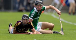 Wexford's Andy Walsh with Conor Boylan of Limerick during their clash at Semple Stadium. Photo: Donall Farmer/Inpho