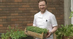 The Dublin chef who grows  crops  in rooftop pots