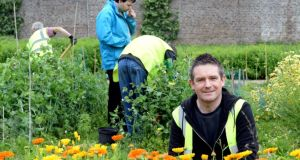 Ciarán Burke working with others in the walled garden in Marley Park. Photograph: Cyril Byrne