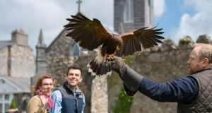 Glenlo Abbey offers archery and falconry with renowned expert Jergan Hick