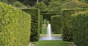 The wonder of a walled garden