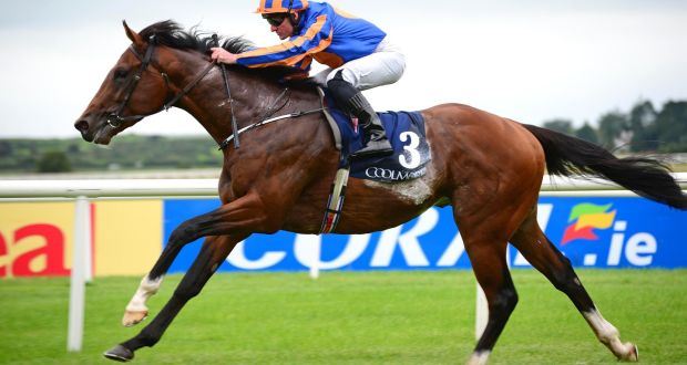 Image result for churchill curragh