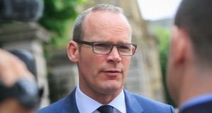 """Instilling a healthy respect for our aquatic environments at a young age and giving children the skills they need to stay safe in water is key to preventing drownings in the long term,"" Minister Simon Coveney said. PHotograph :Collins"