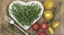Seasonal suppers: let the samphire sparkle
