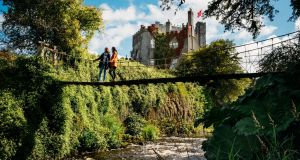 Birr Castle hosts the Irish Game and Country Fair