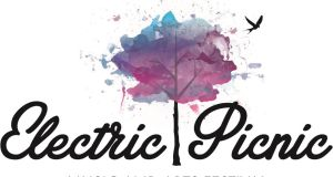 Electric Picnic 2016