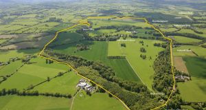Harristown Demesne in Co Kildare is on 750 acres