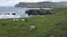 Walk for the weekend: Donegal's ancient byway