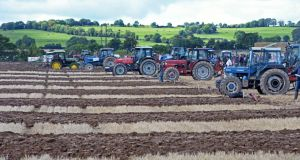 """It started with ploughing. It's grown beyond our expectations. We have no intention of growing the event larger than it is today,"" says Anna May McHugh, managing director of the National Ploughing Championships. Photograph: Eric Luke/The Irish Times"