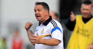 Davy Fitzgerald has stepped down as Clare hurling manager. Photograph: Donall Farmer?Inpho