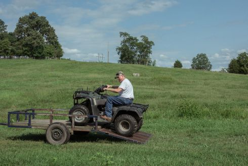 Mitch Hedges checks on his cattle in Paris, Ky., on September 1st. He lives in a divided household where he supports Hillary Clinton and his wife supports Donald Trump.   Photograph: Mike Belleme/The New York Times