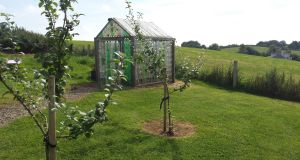 The greenhouse made from plastic bottles in Glaslough, Co Monaghan, as part of its Tidy Towns project. It is powered by a windmill made from discarded aluminium cans