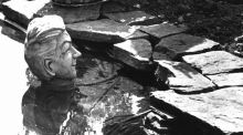 The  sculpted head of Gay Byrne at the  pond in his back garden