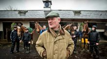 Willie Mullins at his stables in Bagenalstown, Co. Carlow. Photograph: Inpho