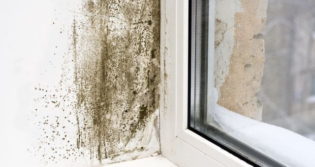Damp Ing The Wall At A Window Poorly Heated House Will Naturally Be More