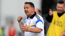 Davy Fitzgerald has been named as the new Wexford hurling manager on a three-year term. Photograph: Donall Farmer/Inpho