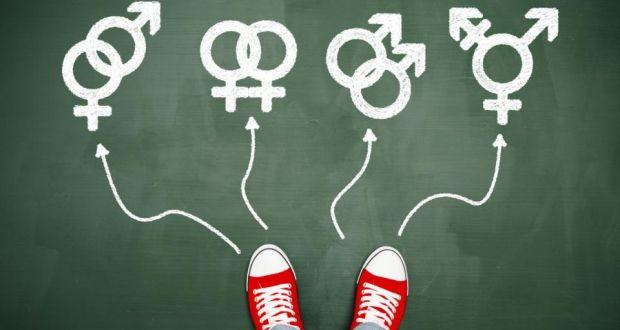 American beauty analysis homosexuality