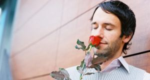 The insight into a rose for