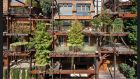 Verde 25 in Turin: not so much a tree house as a house of trees, with more than 60  apartments housed within its five-storey walls