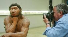 A photographer takes pictures of the reconstruction of Neanderthal man's ancestor displayed in Halle, eastern Germany. Photograph: Sebastian Willnow/AFP/Getty Images