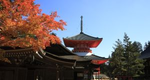 The Konpon-daito pagoda on the holy Buddhist mountain of Koya-san
