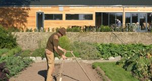 Organic grower Dermot Carey using a row-marker in preparation for sowing seed in the walled kitchen garden of Burtown House