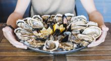 It is shellfish season and there is a wealth of food on our shores
