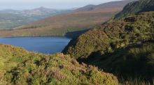 A Walk for the Weekend: Peace and wild beauty along Glencree rim