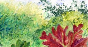 Passion for trees: autumnal colours in Co Mayo. Illustration: Michael Viney