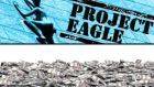 The C&AG found that the Project Eagle sale could have cost the taxpayer up to €200m.