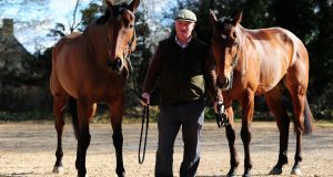 Trainer Colin Tizzard poses with Thistlecrack (L) and Cue Card (R) at Spurles Farm. The pair will go up against each other in the 32Red King George VI Chase at Kempton. Photo: Getty Images