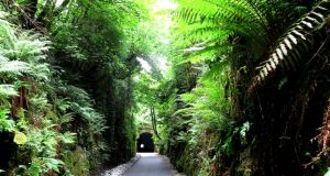 Approaching the stone-built Victorian railway tunnel on the Deise Greenway.