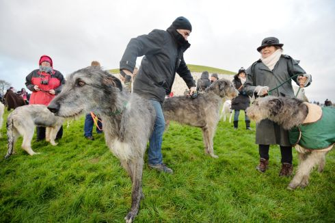 Ivan Gargan from Sherry Hill Wolfhounds  with Paddy and Molly, from the Irish Wolfhound Club of Ireland at Newgrange  as  the clouds parted briefly to let sunshine appear  in the passage for a few moments during the Winter Solstice at Newgrange.  Photograph: Alan Betson / The Irish Times