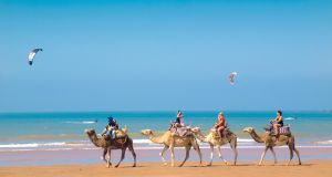 Atlantic retreat: yoga, meditation, surfing, and watching the camels go by  in Morocco. Photograph: Getty