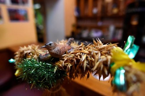 The tradition, believed to originate in prehistoric times, involves the capture of a wren which is then placed upon a bush usually decorated with ribbons.  In this photograph a wooden wren is fixed to a costume ahead of the 2016 Wren Day parade in Dingle.  Photograph: Clodagh Kilcoyne/Reuters