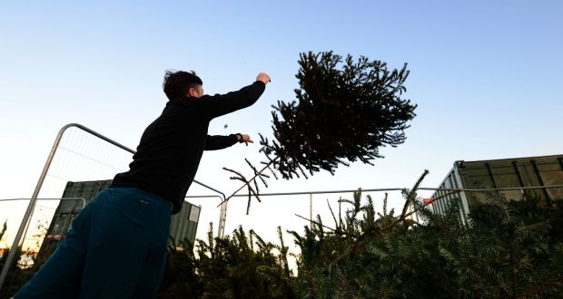 Disposing of a Christmas tree fat Strand Road, Sandymount, Dublin. Photograph: Dara