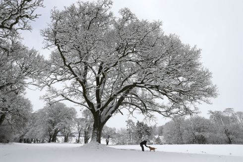 BRACO CASTLE, SCOTLAND: A man walks a dog in the grounds of Braco Castle in Perthshire amid the snowy wastes. Photograph: Andrew Milligan/PA Wire